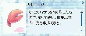 f0035473_2295857.jpg