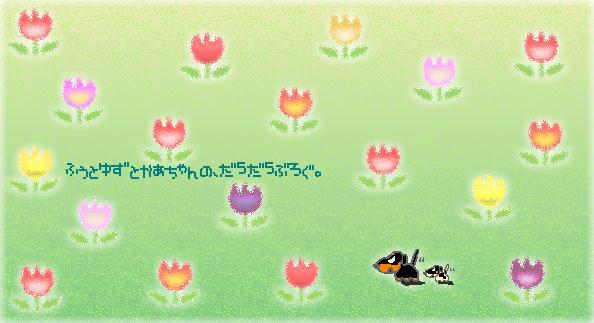b0048649_18192489.jpg
