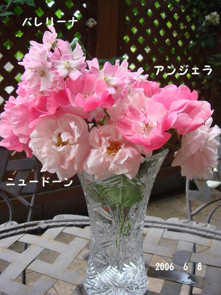 f0057006_14562664.jpg