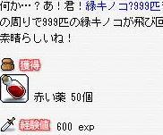 c0055827_7221168.jpg