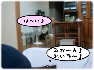 b0078073_2243191.jpg