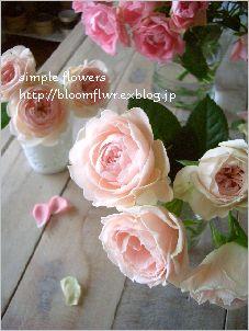 b0023268_2283070.jpg