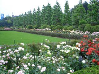お江戸庭園めぐり_f0057564_0545852.jpg