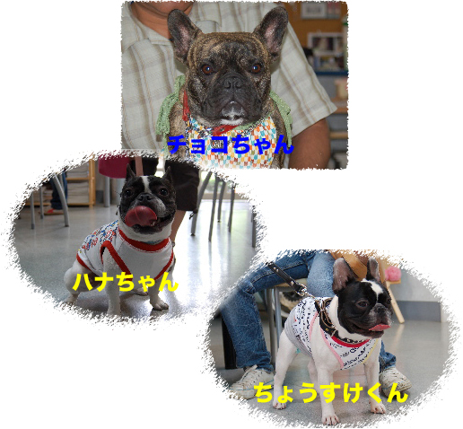 b0026701_10303751.jpg