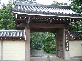 睡蓮を見に - 烏山寺町_a0057402_19501971.jpg