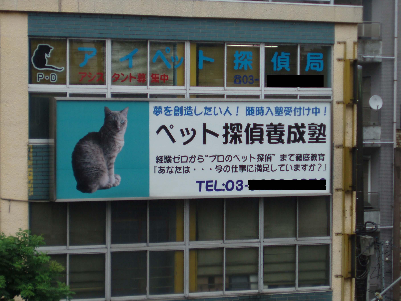 世界の車窓からin高円寺_d0061857_1053251.jpg