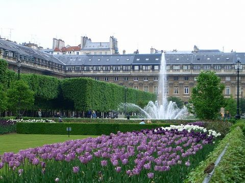 パリ 2006:4日目(5/7) 朝の礼拝~パレ・ロワイヤル_a0039199_20474978.jpg