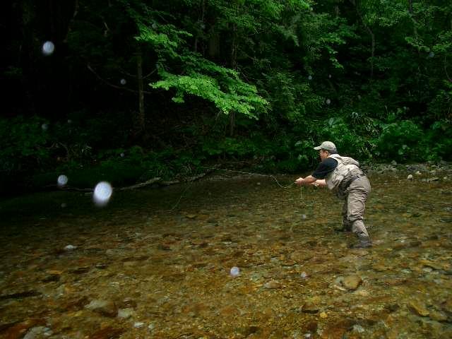 懐かしい川に行ってきました。 (しつこい雨の中、バカ二人)_e0029256_12394883.jpg