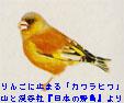 f0017409_15275253.jpg