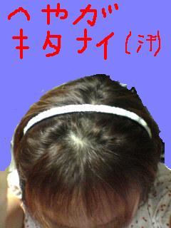 b0105214_250925.jpg