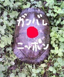 b0104420_101113.jpg