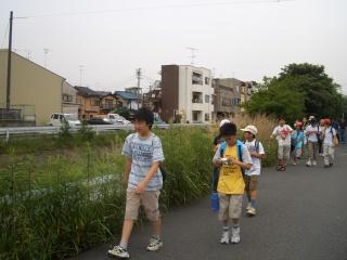 有栖川・桂川歩きとホタル観察_e0008880_17405094.jpg