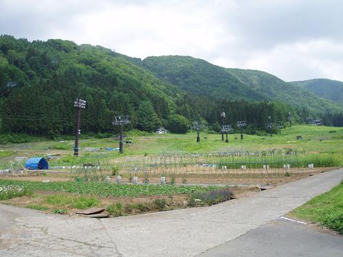 スキー場って??_b0099190_1142695.jpg