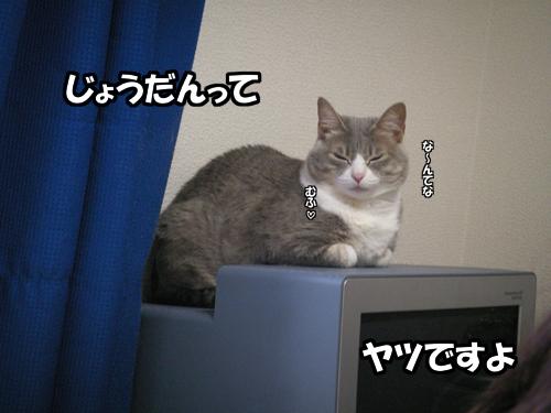b0083267_22421261.jpg