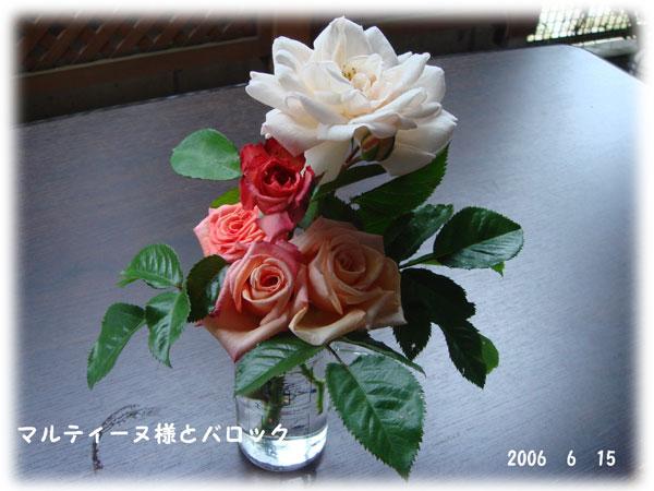 f0057006_1237182.jpg