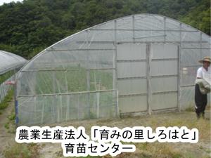 b0076710_18392840.jpg
