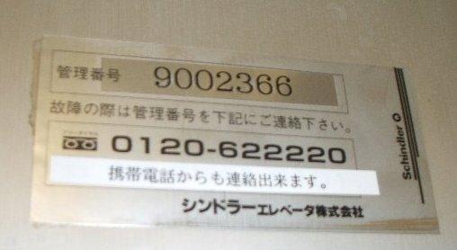 b0052523_534183.jpg