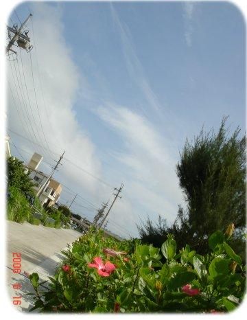 f0068042_1531120.jpg