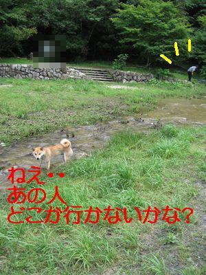 e0085147_132936.jpg