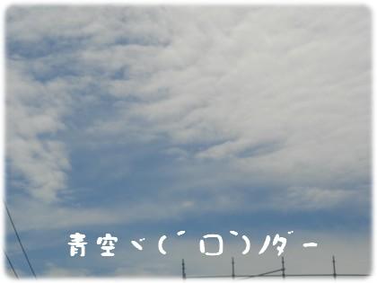 b0078073_21365616.jpg
