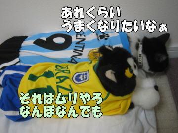 b0041182_2326811.jpg