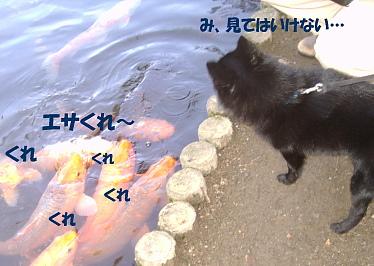 a0009750_14203830.jpg