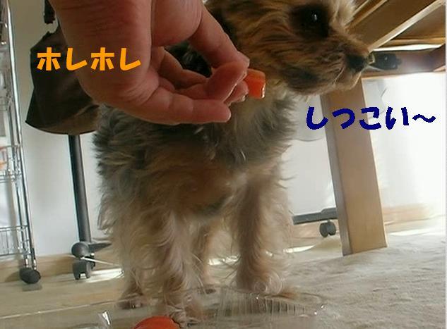 b0097394_17392373.jpg