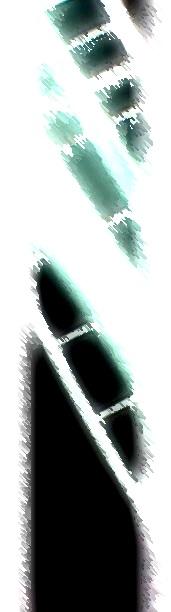 d0003009_103188.jpg