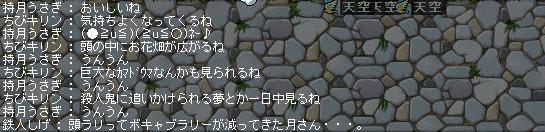b0102513_182763.jpg