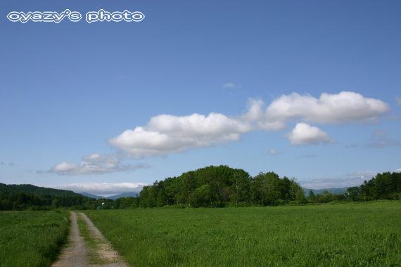 北海道の自然_a0071514_205449100.jpg