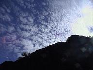 Parque Nacional Mnuel Antonio_e0055023_05755100.jpg