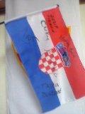 クロアチア応援だぁ!_b0036361_20255345.jpg