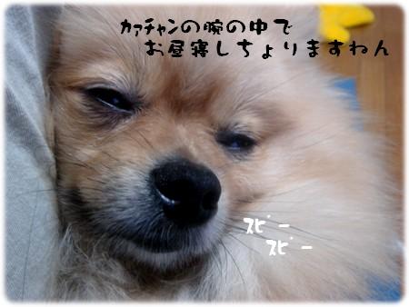 b0078073_2235076.jpg