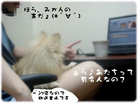 b0078073_226335.jpg