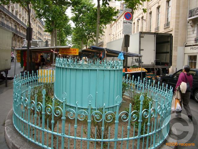 ■今日のマルシェから(ラスパイユ、パリ)_a0014299_1654319.jpg