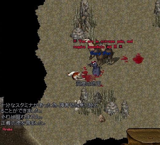 玉石(ぎょくせき)_e0068900_6481377.jpg