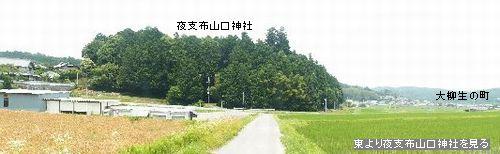 a0016431_1223675.jpg