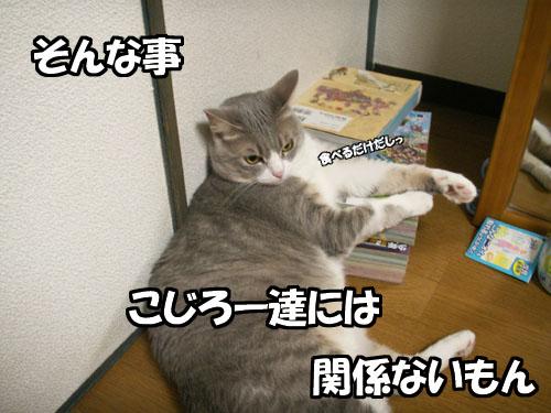 """値上がり(-\""""-;)_b0083267_227883.jpg"""