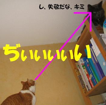 b0051172_022420.jpg