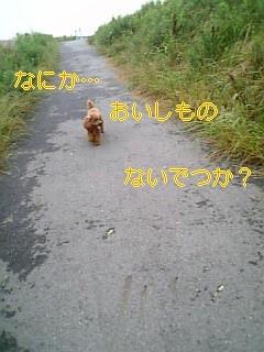f0082938_2251235.jpg