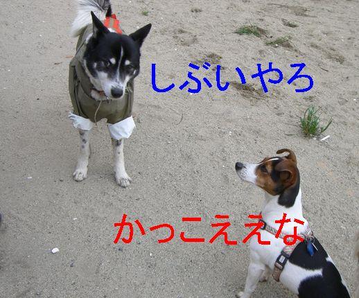 f0053952_13284432.jpg