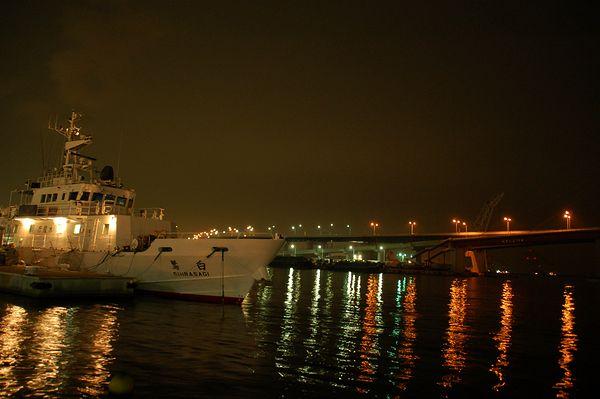 夜の船_e0053660_2202422.jpg