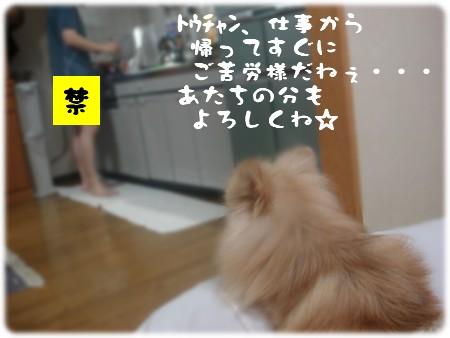 b0078073_234640.jpg