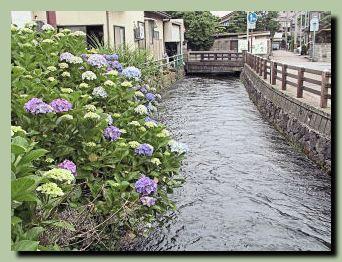 大野庄用水(その2)_f0079990_856234.jpg