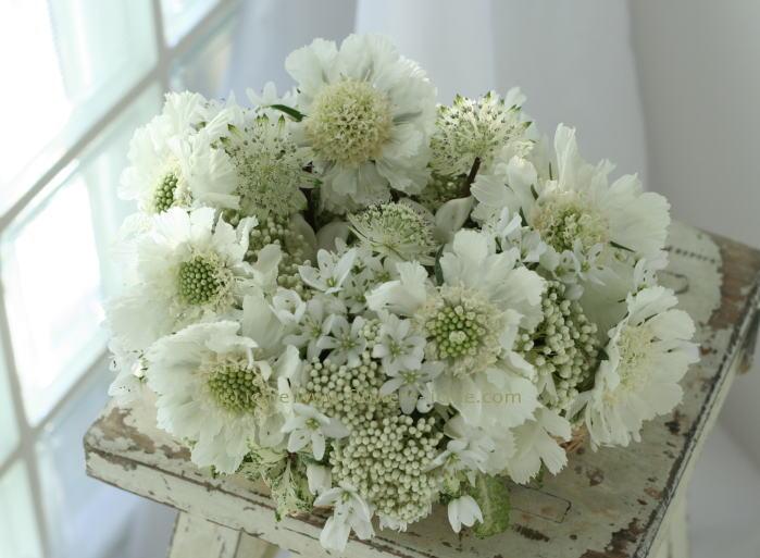 リングピロー 生花 かすかな白だけで_a0042928_7164243.jpg