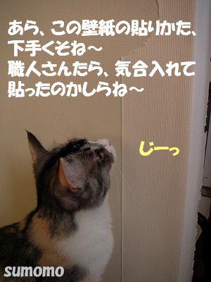 f0063729_17221996.jpg