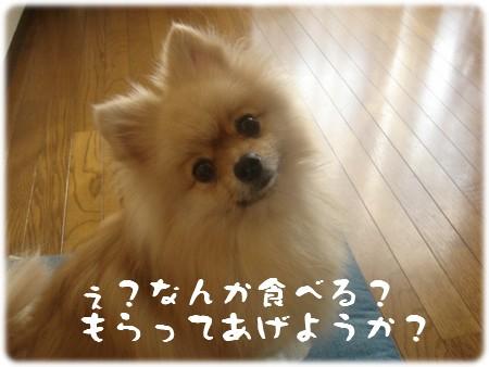 b0078073_21555845.jpg