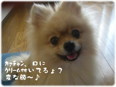 b0078073_21565632.jpg