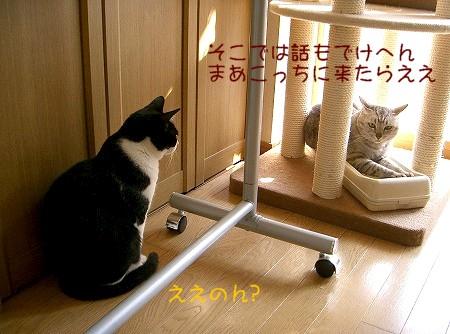 d0005397_10572359.jpg