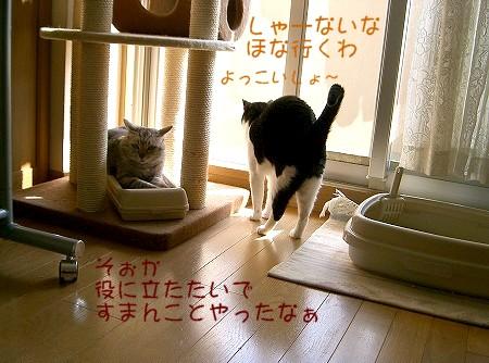 d0005397_11262332.jpg